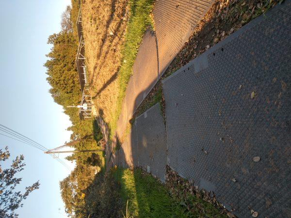 非舗装道路の養生
